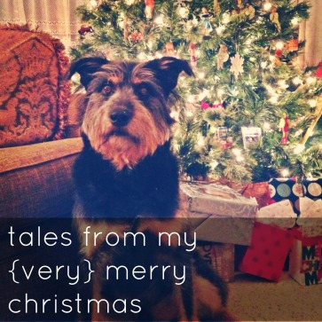 tales from my {very} merry christmas