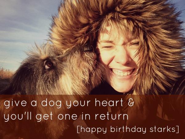 happy birthday starks