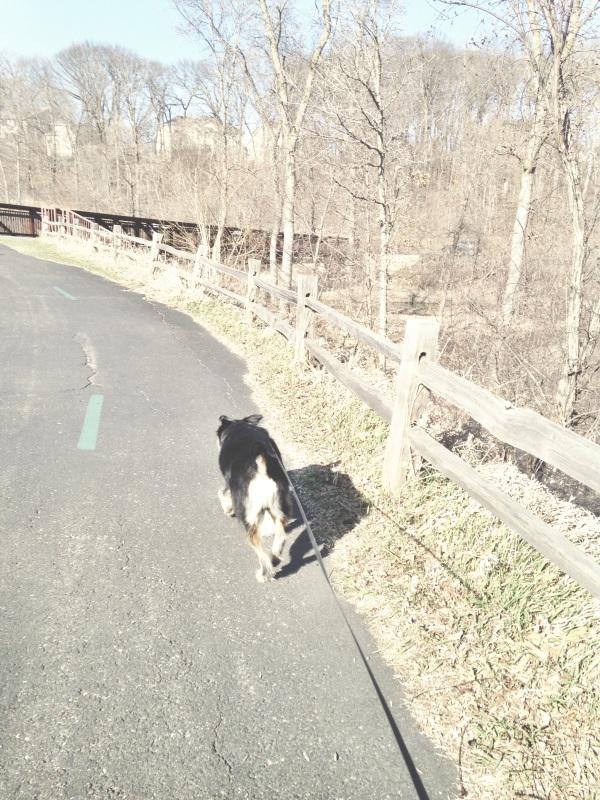fitness // first run of the season (maple grove)