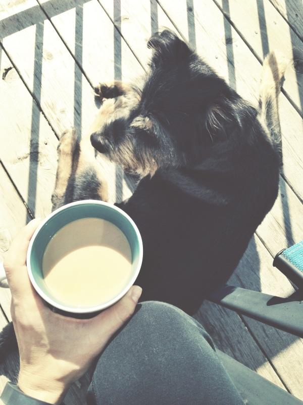 wknd recap // coffee with starks